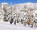 Snowmass Aspen CO-Lodging holiday-Timberline Condominiums-1 Bedroom Loft quot Deluxe quot Condominium Max Occupancy 4