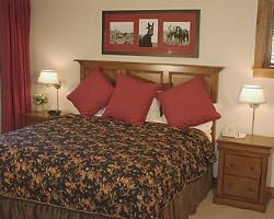 Snowmass CO-Lodging holiday-The Villas at Snowmass Club