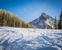 Crested Butte Colorado-Special Hot Deal travel-3rd or 4th Night Lodging Day of Skiing FREE at Crested Butte