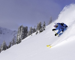 Jackson Hole-Special Hot Deal tour-10 off 3 nights OR get your 9th night FREE at the Wort Hotel Book by November 1