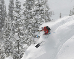 Ski Vacation Package - Get your 4th or 5th night FREE at Town Square Inns of Jackson Hole!