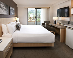 Whistler Blackcomb-Lodging vacation-Delta Whistler Village Suites-1 Bedroom Suite Max Occup 4