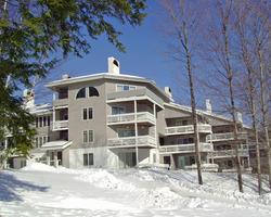 Paradise Condominiums